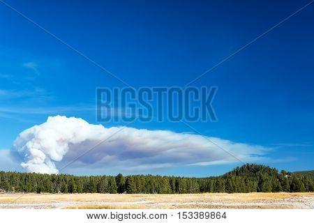 Smoke Rising In Yellowstone