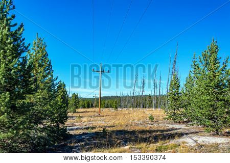 Power Lines In Yellowstone National Park