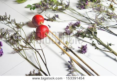 Mix of dry flowers for ikebana and flower arrangement