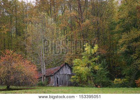 a rustic barn set back among trees changing colors in autumn