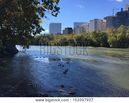 View from Theodore Roosevelt Island in Washington DC