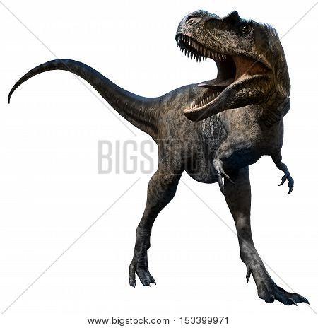 Albertosaurus from the Cretaceous era 3D illustration