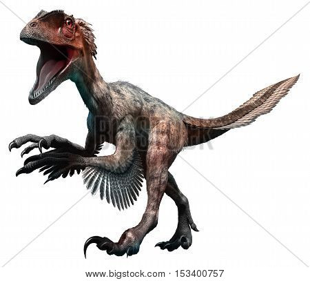 Deinonychus from the Cretaceous era 3D illustration
