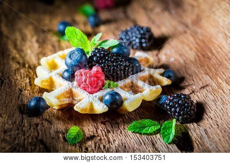 Fresh Berry Fruits With Waffels On Wooden Bark