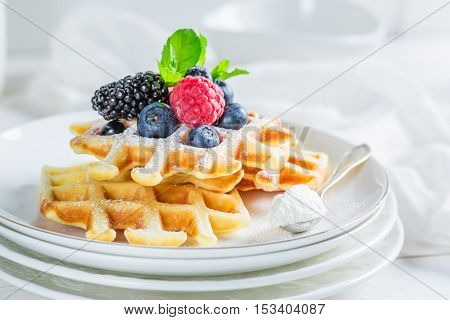 Fresh Waffels With Berry Fruits For Breakfast