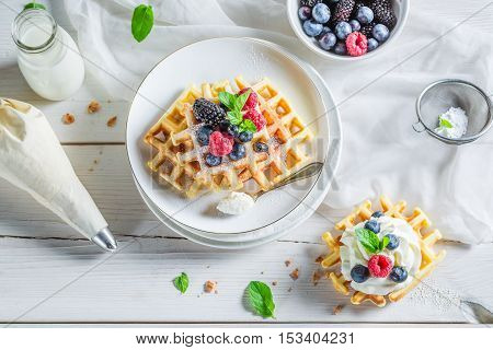 Tasty Waffels With Berry Fruits For Breakfast
