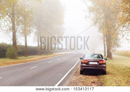 Brown Car On Roadside