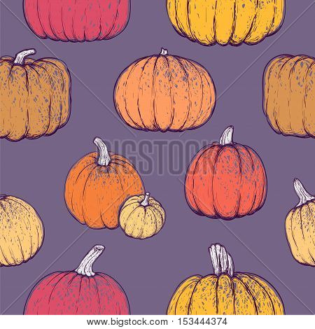 Seamless pattern with bright sketchy pumpkins for thanksgiving day halloween etc. Vector illustration