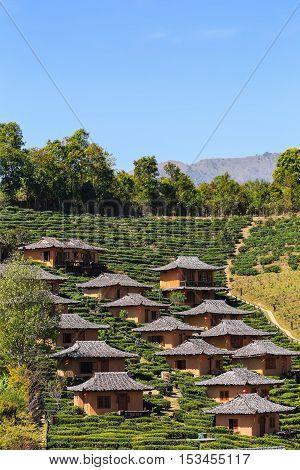 Lodging Houses At Ban Rak Thai