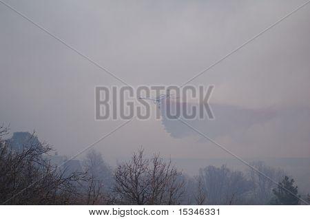 Burning Tree Fire