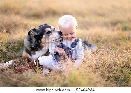 German Shepherd Miz Breed Dog Kissing Baby Girl On Cheek