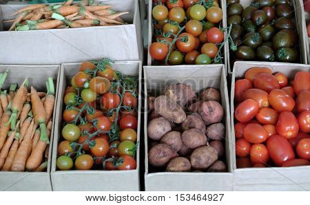 Vegetable At Safety Agriculture Fair