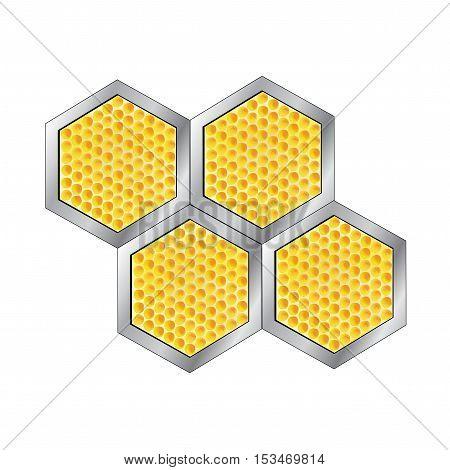 Vector honeycomb on white background - illustration