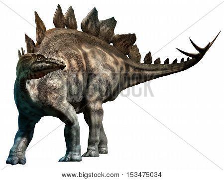 Stegosaurus from the  Jurassic era 3D illustration