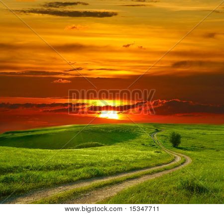 Summer landscape with green grass, road and sunset