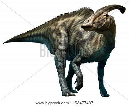 Parasaurolophus walkeri from the cretaceous era 3D illustration