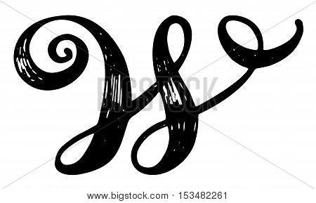 Letter w calligraphy alphabet vector photo bigstock