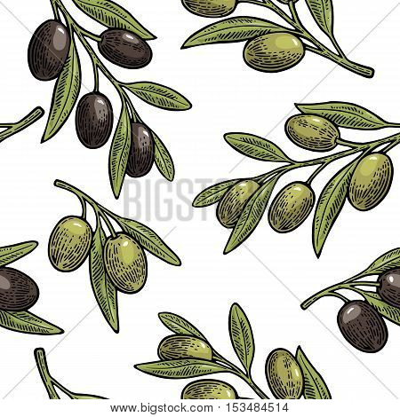 Seamless pattern black and green Olives on branch with leaves. Hand drawn design element. Vintage color vector engraving illustration for logotype poster web. Isolated on white background.
