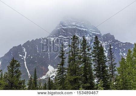 Rocky Mountains and Boreal Forest - Jasper National Park, Alberta, Canada