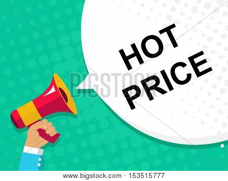 Hand Holding Megaphone With Hot Price Announcement. Flat Style Illustration