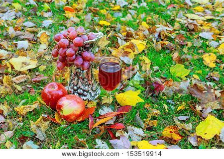 Glass Of White Wine And Autumn Leaves Against