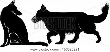 shepherd . German Shepherd Silhouette. shepherd dog