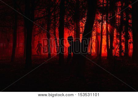 crowd of hungry zombies in the woods. Silhouettes of scary zombies walking in the forest at night