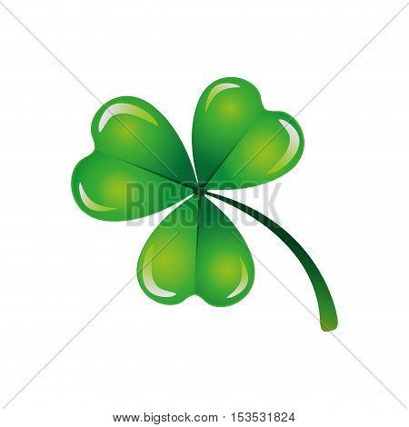 clover or shamrock icon image vector illustration design