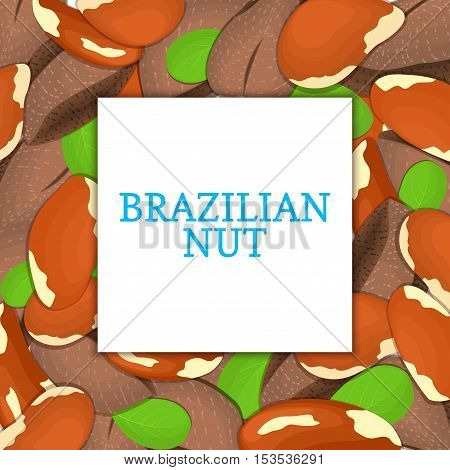 The square colored frame composed of brazilian nut. Vector card illustration. Nuts frame, brazilnut fruit in the shell, whole, shelled, leaves appetizing looking for packaging design of healthy food