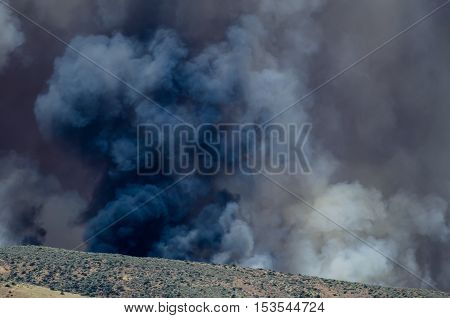 Dense Black Smoke Rising from the Raging Wildfire
