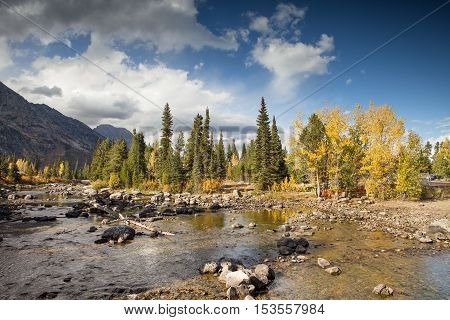 Cottonwood Creek in the Grand Teton National Park