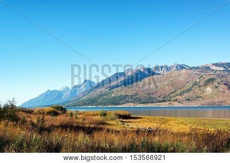 Grand Teton Landscape
