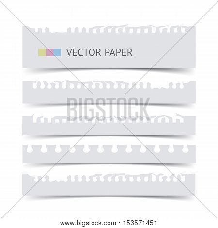 White notebook torn paper isolated on white realistic vector paper. Notebook paper pieces for dividers web banners education illustration