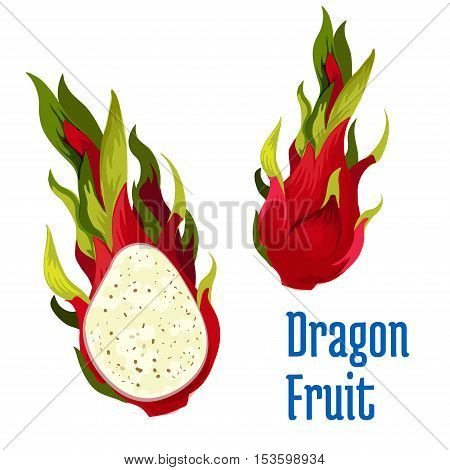 Exotic tropical dragon fruit icon. Vector element of red dragon fruit pitaya element whole and half cut. Design emblem for juice, product sticker label, snack package design, tag
