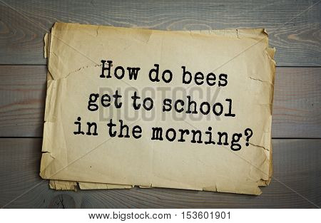 Traditional riddle. How do bees get to school in the morning?( On the school buzz.)