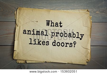 Traditional riddle. What animal probably likes doors?( A doormouse.)
