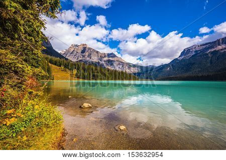 Coniferous forest on the shore of mountain lake. Emerald Lake, Yoho National Park, Canada. The concept of eco-tourism and adventure tourism