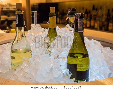 Bottles of wine in ice bucket bar