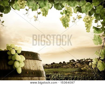 Wine barrel, grapes and vineyard in vintage style
