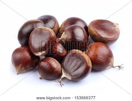 Chestnut close up isolated on white backgrounds.