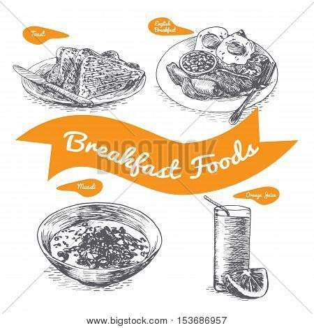 Illustration of various sorts breakfast foods. Monochrome illustration of breakfast foods.