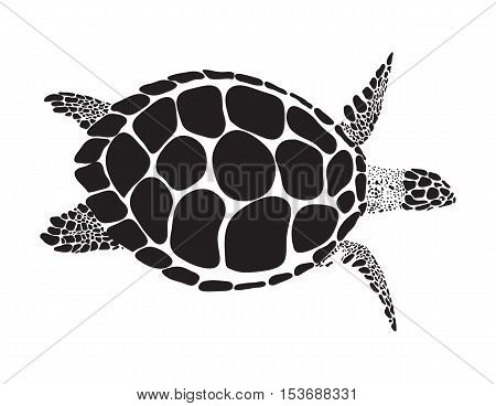 Turtle isolated on white background design flat.