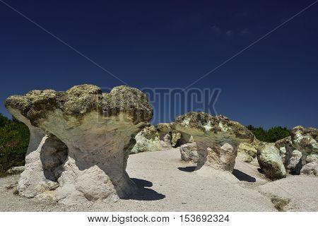 Rock mushrooms, near Beli plast village, Bulgaria