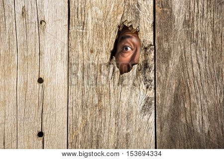 The human eye in wooden hole for hidden from scare concept