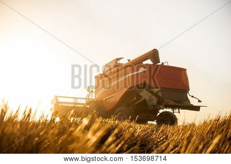 It's Harvesting Time