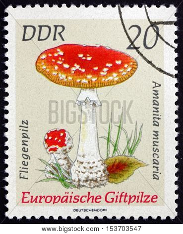 GERMANY - CIRCA 1974: a stamp printed in Germany shows Fly Amanita Amanita Muscaria Poisonous European Mushrooms circa 1974