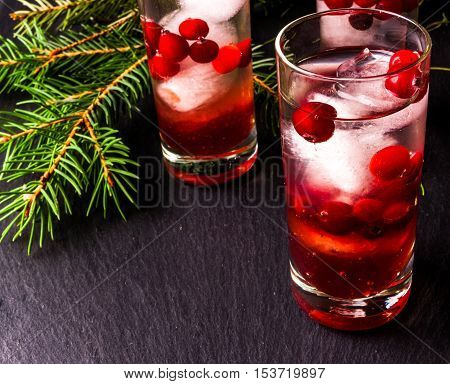 Refreshing cocktail with vodka with ice and cranberry, near christmas tree branches, copy space