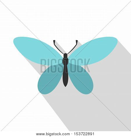 Butterfly with antennae icon. Flat illustration of butterfly with antennae vector icon for web