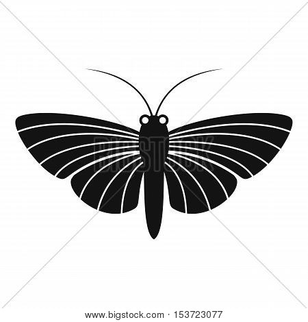 Butterfly with small wings icon. Simple illustration of butterfly with small wings vector icon for web