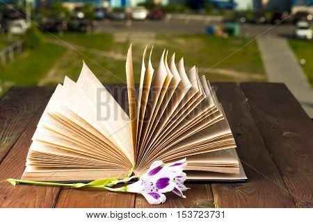 Open book and flowers on table. Back to school. Copy space